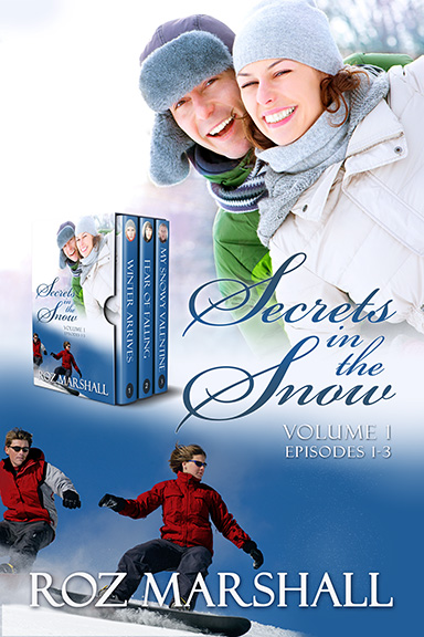 Secrets in the Snow by Roz Marshall